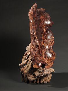 #5  Large Oak burl with Saguaro cactus stand. by john Hoyt