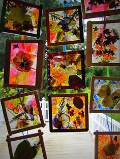 Crayon and pressed flower and leaves sun catchers.