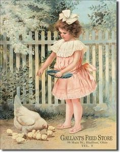 Girl Feeding Chickens - Chicken Signs: Presents for Chicken Lovers