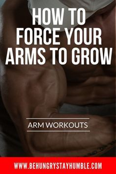 The Ultimate Arm Workout Grow Massive Biceps & Triceps is part of Arm workout - The key when training your arms in the gym is to keep it slow, not too heavy, and to always focus on the contraction with each rep Ace Fitness, Fitness Studio Training, Muscle Fitness, Gain Muscle, Mens Fitness, Muscle Boy, Physical Fitness, Health Fitness, Big Arm Workout