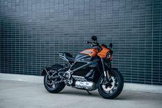 Harley Davidson, Davidson Bike, Honda Cb, Royal Enfield, Motos Retro, Hd Motorcycles, Motorcycle Images, Ride Out, Successful Women