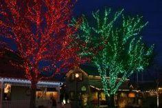 green christmas lights