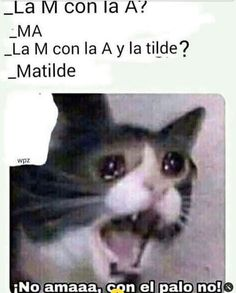 Funny Spanish Memes, Spanish Humor, Stupid Funny Memes, Lmfao Funny, Funny Stuff, Triste Disney, New Memes, Memes Humor, Otaku Anime