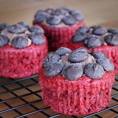 Red Velvet Stevia Cupcakes