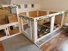 Indoor Guinea Pig Cage, Indoor Rabbit House, Indoor Rabbit Cage, House Rabbit, Rabbit Hutch Indoor, Diy Bunny Toys, Diy Bunny Cage, Bunny Cages, Rabbit Cages