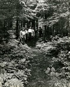 Hikers on the trail to Andrew's Bald Great Smoky Mountains National Park June 19, 1946