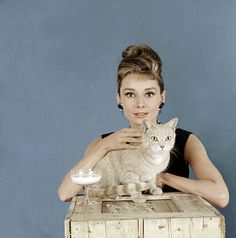 Audrey Hepburn and Cat (Breakfast at Tiffany's)