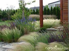 Wizytówka - Małymi krokami bo własnymi ręcami - Forum ogrodnicze - Ogrodowisko