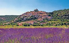 Provence, France...i can smell the lavender