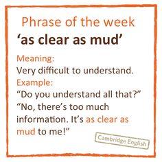 slang essay