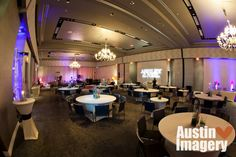 W Austin Hotel Wedding By Imagery Photography Dog