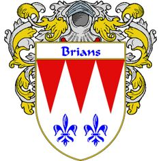 Brians Coat of Arms   namegameshop.com has a wide variety of products with your surname with your coat of arms/family crest, flags and national symbols from England, Ireland, Scotland and Wale