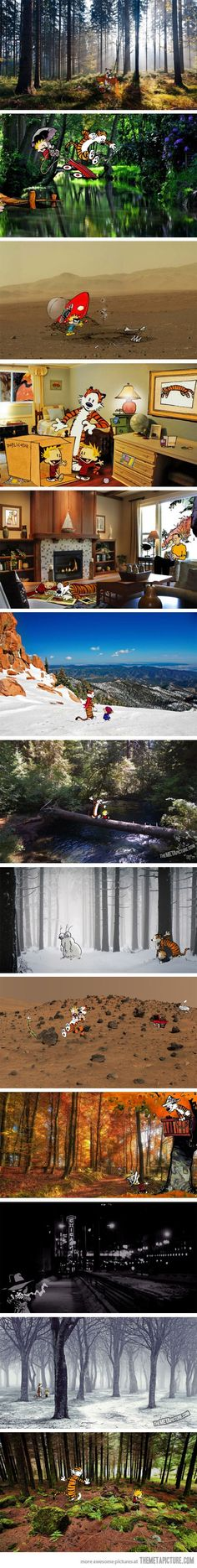 """""""Calvin and Hobbes in the real world"""" (Little White Lion).  I adore Calvin & Hobbes!!"""