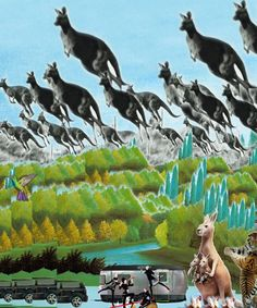 Kangaroo created with Bazaart by Akira Hashiguchi