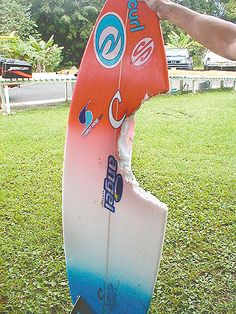 The actual board that bethany hamilton got her arm bit of by !!!!!!!!!!!!!!!