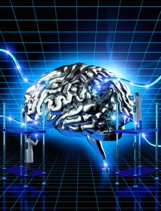 Why Neuroscience Matters To You - Huffington Post