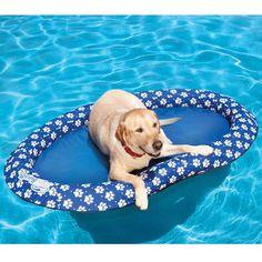 NEED IT! Doggie float
