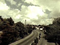 The Wilds, Harrow Road, Houghton South Africa, Landscape Photography, Country Roads, African, Park, City, Amazing, Photos, Pictures