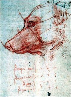 A dog head appears in a notebook by Leonardo da Vinci. Using digital technology, the Louvre museum in Paris is showing 12 da Vinci manuscripts normally locked away from public view.