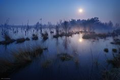 "Moor With Moon - Fenland in North Germany  <a href=""http://instagram.com/kilianschoenberger/"">I N S T A G R A M</a>  <a href=""https://www.facebook.com/pages/Landscape-Photography-by-Kilian-Schoenberger/304631876263547"">L A N D S C A P E   P H O T O G R A P H Y facebook</a>"