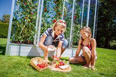 Gardenplaza: Tomatenhaus - Ein Gewächshaus speziell für die Tomatenzucht (Foto: epr/Buttazoni GmbH)