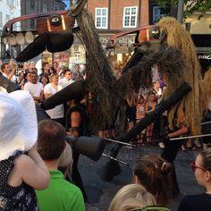 My favorite so far at Aalborg Carnival
