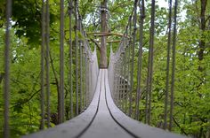 Canopy Walk, Lake Geneva, WI. Ever wish to walk atop the trees? Well, now you can.