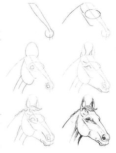 How To Draw A Horse.