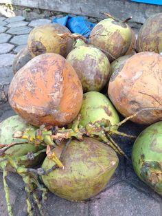 Alun Alun Ngawi di Kabupaten Ngawi, Jawa Timur