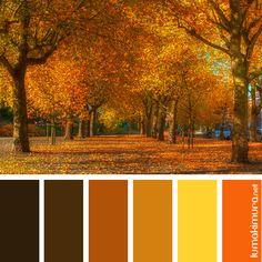 paleta de cores outono - Pesquisa Google
