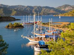 A harbour in Fethiye, Turkey