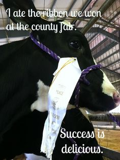 """I ate the ribbon we won at the country fair. Success is delicious."" I can honestly say that it's never boring at the barn."