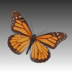 Butterfly Fly 3D Obj - 3D Model