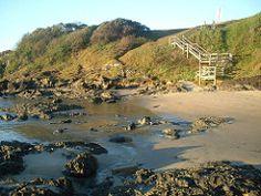 sawtell.beach (7) Beach, Water, Outdoor, Gripe Water, Outdoors, Seaside, Outdoor Games, Aqua