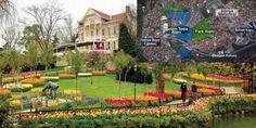 İstanbul'da tarihi Emirgan Korusu'nun bitişiğinde, Boğaz'a hakim tepedeki arazinin satışı için düzen...