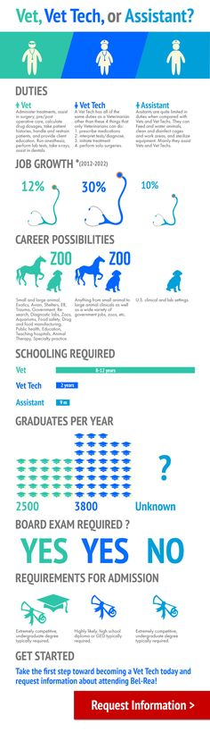 Vet, Vet Tech, or Assistant? Veterinarian School, Becoming A Veterinarian, Veterinary Studies, Veterinary Medicine, Vet Tech Student, Vet Assistant, Vet Med, Vet Clinics, Animal Science