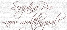 Free Modern Calligraphy Fonts - Scriptina Pro