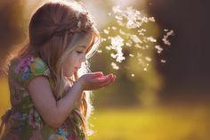 Wish. by Amber Bauerle   Frosted Productions