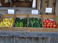 farmstand | Campbell's Farm Stand Local & Delicious