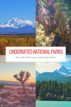 8 Underrated National Parks That Will Leave You Speechless