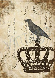 The CROW  r27  Kunstdruck Digiprint   von Vintage Prints auf DaWanda.com