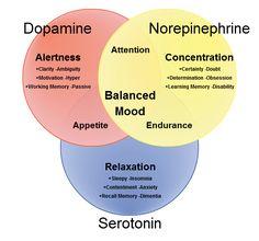 Best pills for memory loss photo 3