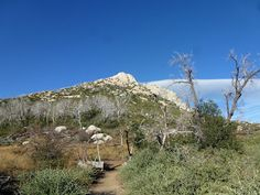 Brian and Ashleys Hiking Blog!: Stonewall Peak (Cuyamaca Rancho State Park)