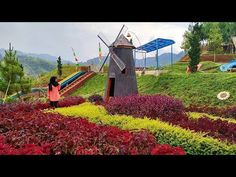 28 Best Bandung Tour Travel Package Images Tours
