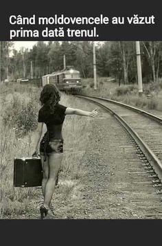 Ex Libris, Nice Asses, Romania, Railroad Tracks, Humor, Memes, Roxy, Funny, Desktop