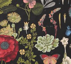 Fabric by the Yard - Poppy Botanical | Pottery Barn