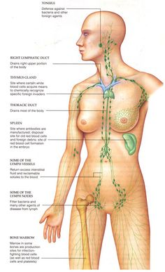 manual lymph drainage self massage