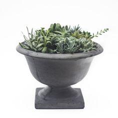 Eco-friendly Concrete Campagna Decorative Bowl (Vietnam)   Overstock.com Shopping - The Best Deals on Planters, Hangers & Stands