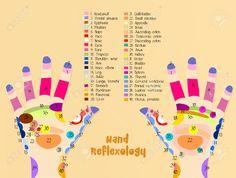 Hand Reflexology에 대한 이미지 검색결과