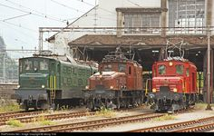 """In front of the shed in Erstfeld from left to right: double locomotive Ae 8/14 11801 from 1931 with 5416 kW (SBB Historic), """"crocodile"""" Ce 6/8 II 14253 from 1919 with 2688 kW (SBB Historic) and """"Seetal crocodile"""" De 6/6 15301 from 1926 with 850 kW (Association Seetalkrokodil 15301)."""
